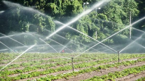Sprinklersüsteem-hortinet